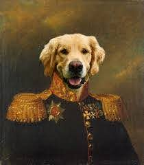 The pet paintings are widely used due to their originality