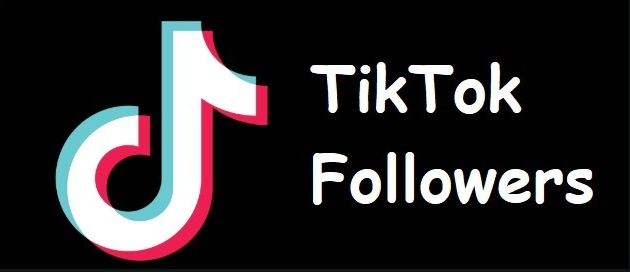 Here is an important guide about gaining followers on TikTok