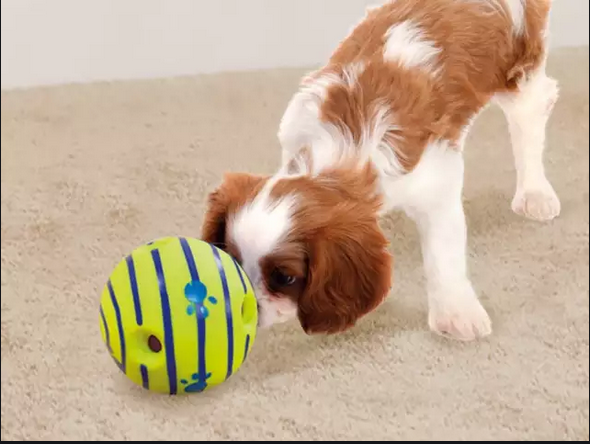 Canadian Store of the Best Dog Toys
