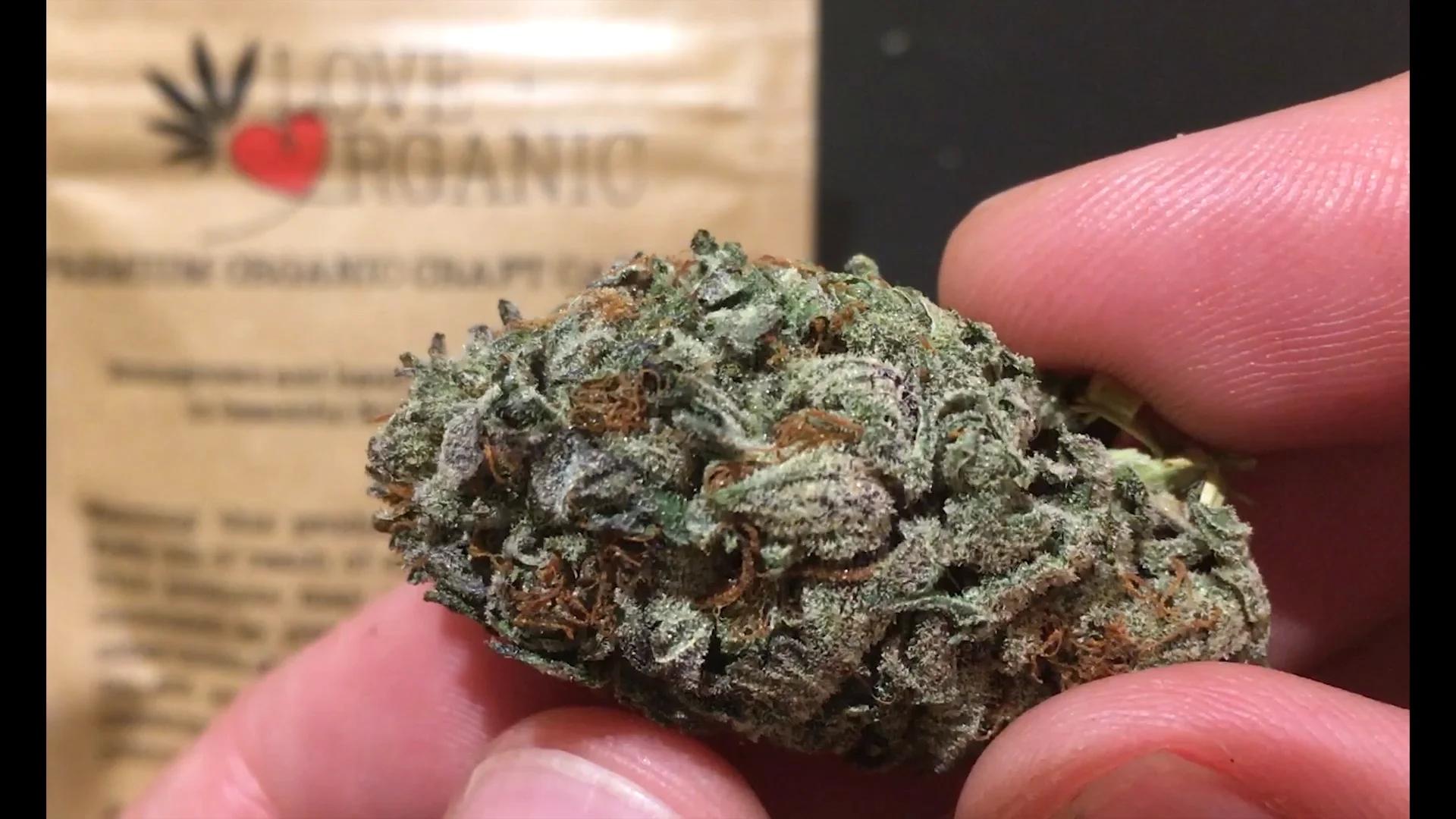 Buy Weed Online Guarantee