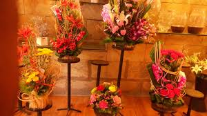 Why Should You Gift Flowers To Your Loved Ones?