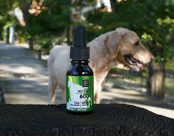 What makes you think that cbd oil for cats is useful
