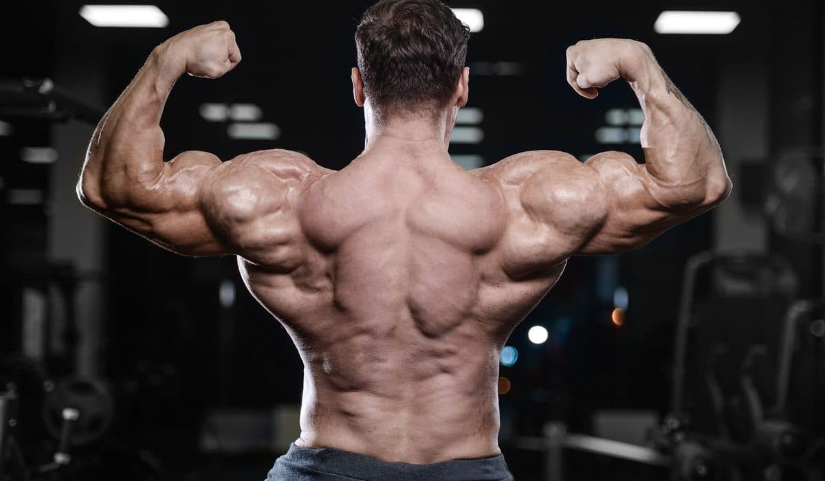 Highlighting The SARMS Reviews- Pros And Cons